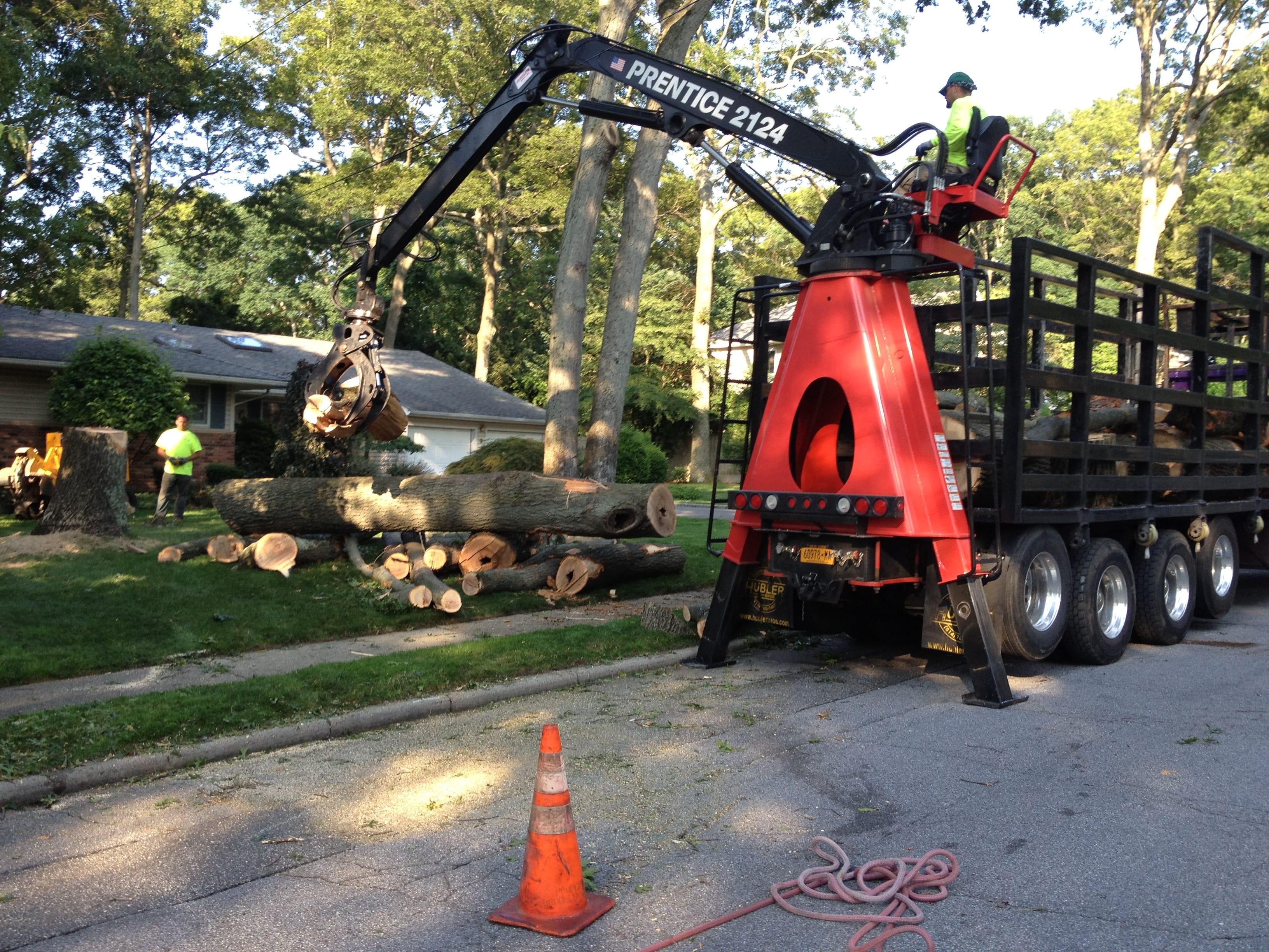 Brooklyn Tree Technicians