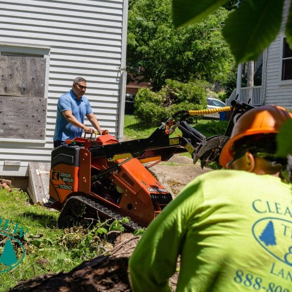 Land clearing workers in Brooklyn NY