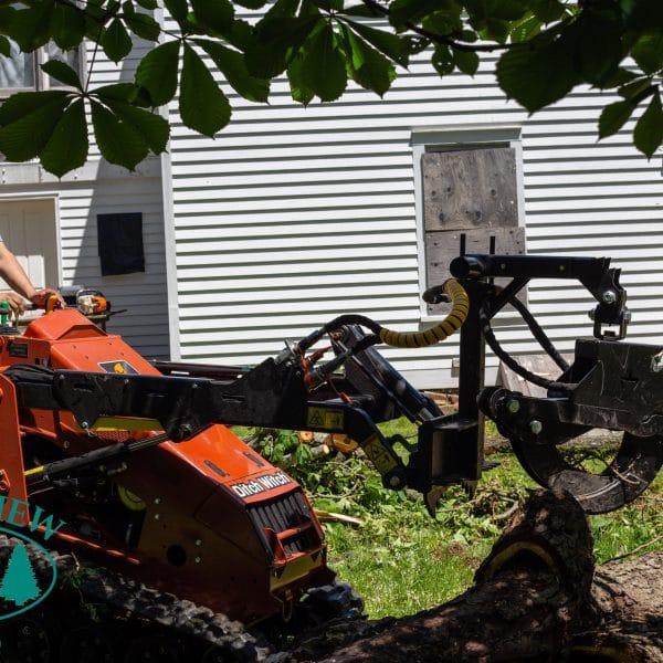 tree logging equipment in Brooklyn NY